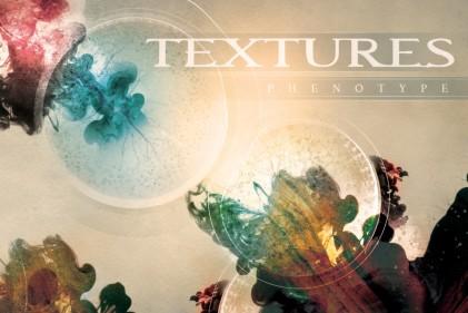 Textures Phenotype
