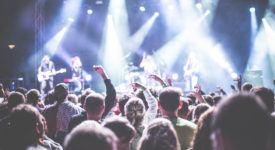 Fatal Flowers, concert, publiek - Foto: Pexels (Publiek Domein)