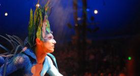 Cirque du Soleil - fotocredits whoALSE (Wikimedia Commons)