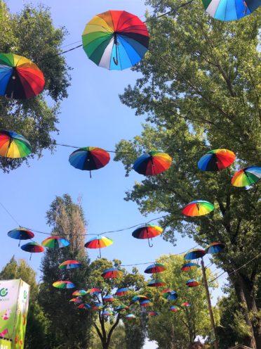 Sziget Festival 2017 - Fotocredits: Kartien Luinenburg (ArtiestenNieuws)