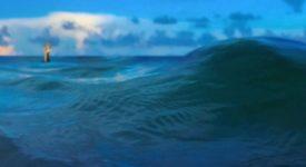 Who Do You Trust? van Papa Roach - Fotobron: Bol.com