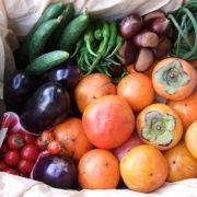 ???? Autumn Fruit and Vegetables in Japan - Fotocredits: Sakurai Midori - Wikimedia Commons (CC BY-SA 2.1 JP)